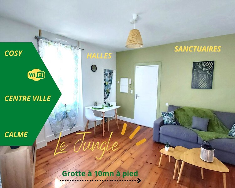 'Le Jungle' hyper centre, tout confort (wifi), vacation rental in Bartres
