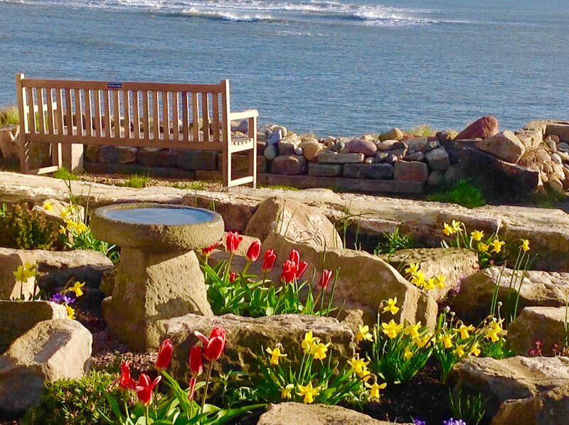 Pele View Cottage by the sea, Cresswell, vacation rental in Ashington