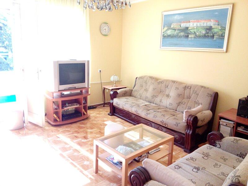 Apartment for egzit festival, alquiler vacacional en Sremski Karlovci