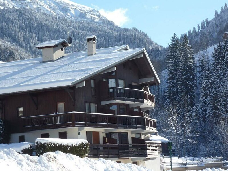 STUDIO MEZZANINE 31M2 POUR 4/5 PERSONNES, holiday rental in Areches