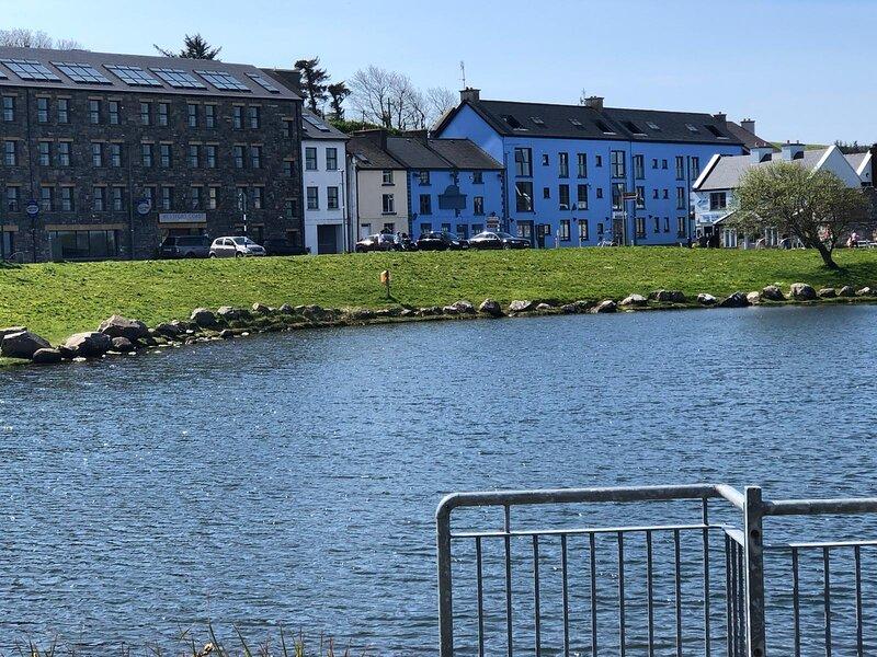 2-Bed Apartment in the heart of  Westport, location de vacances à Newport