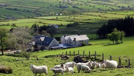 North Coast Mountain Retreat, holiday rental in Glenariffe