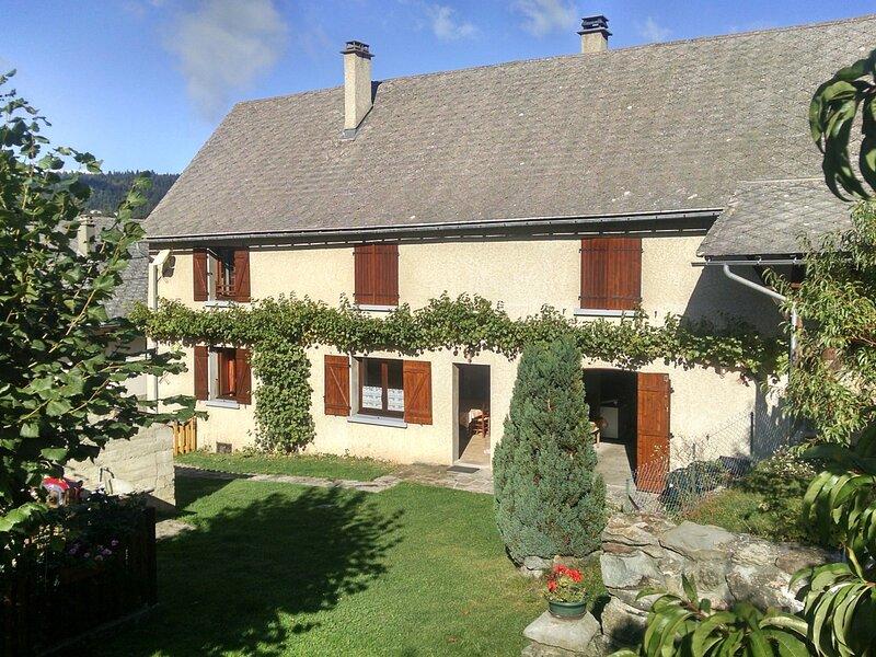 ORIS EN RATTIER - 6 pers, 75 m2, 4/3, holiday rental in Valbonnais