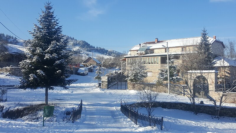 Guesthouse Pashuta, holiday rental in Korce County