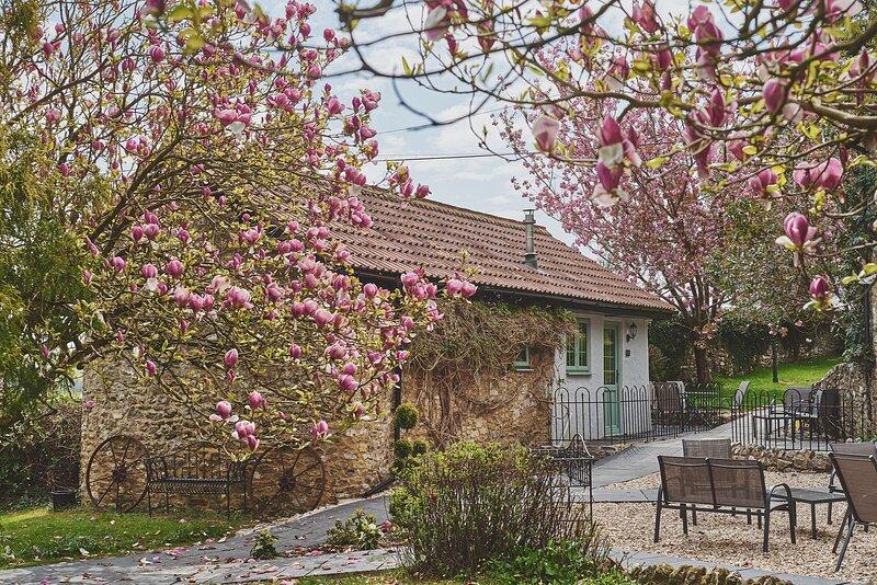 Half Moon Cottage, alquiler vacacional en Chardstock