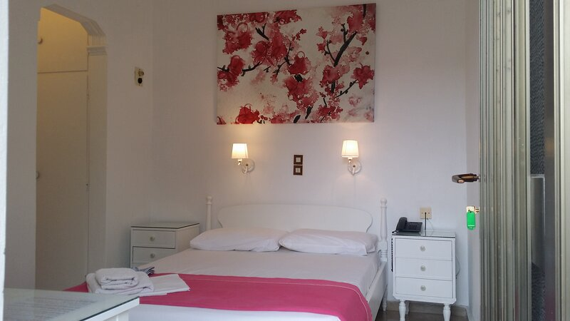 Welcome To Hotel Rachel, vacation rental in Vagia