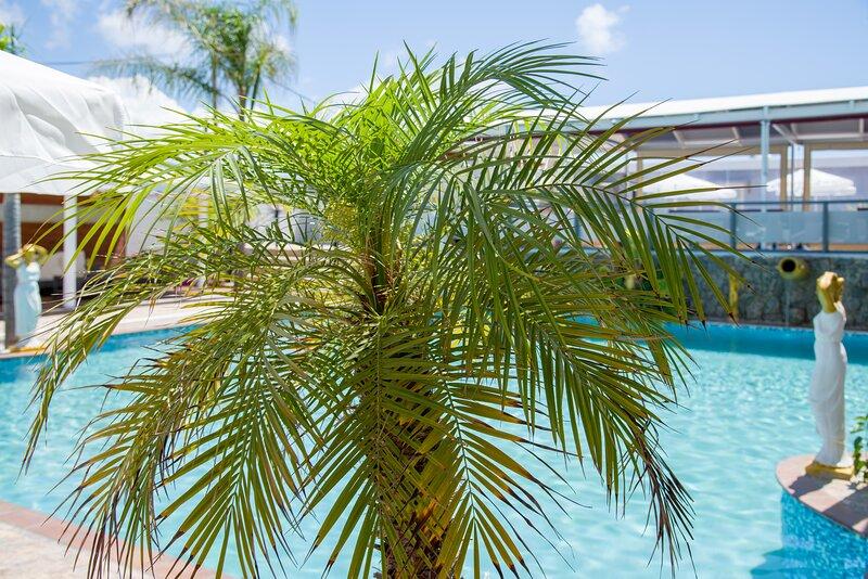 Paradice Hotel Luxury Suites 9, alquiler vacacional en Stavros
