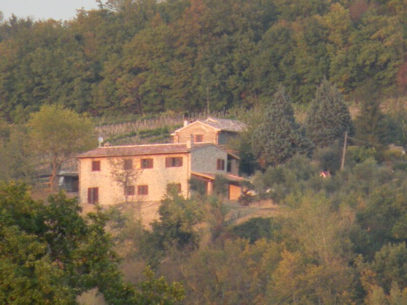 Casale panoramico con piscina, holiday rental in Collevalenza