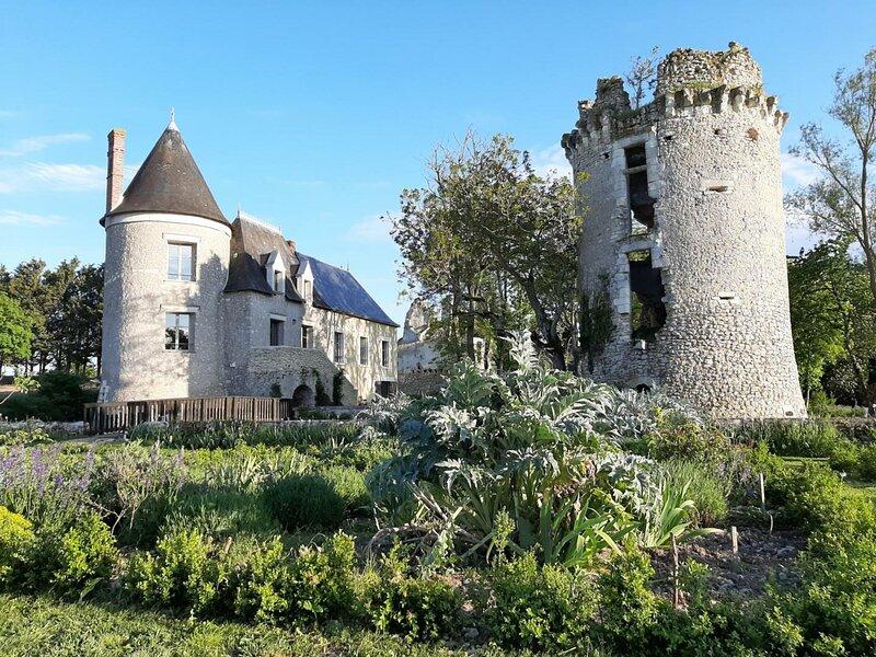 Château de Fontenay, location de vacances à Dolus-le-Sec
