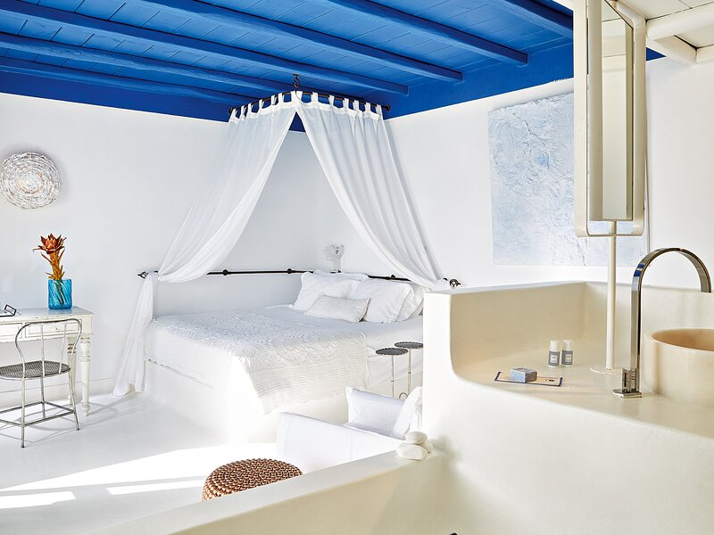 Royal Blu Mansion with Private Shaded Pool, vacation rental in Platys Gialos