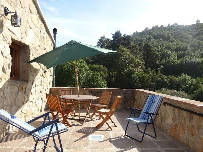 Spacious house with mountain view, holiday rental in La Matanza de Acentejo