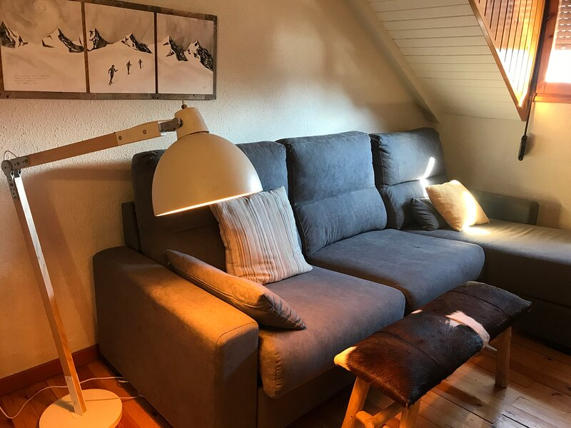 Apartment with shared pool, holiday rental in Benasque