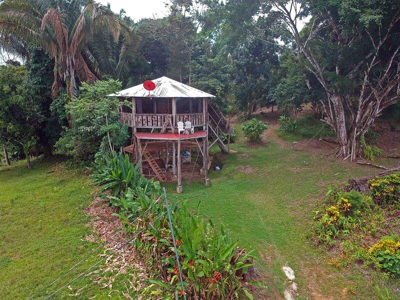 Kanku Sho Chalet - Jungle Treehouse – semesterbostad i Golfito