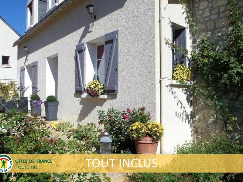 La Fleur de Vigne, holiday rental in Panzoult
