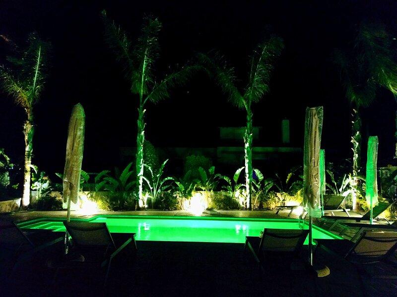 Palmeral Luxury Suites - Aralia first floor, holiday rental in Kremasti
