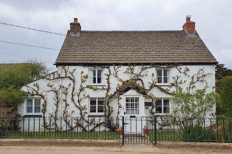 Vine Cottage, holiday rental in Newtown-in-St-Martin