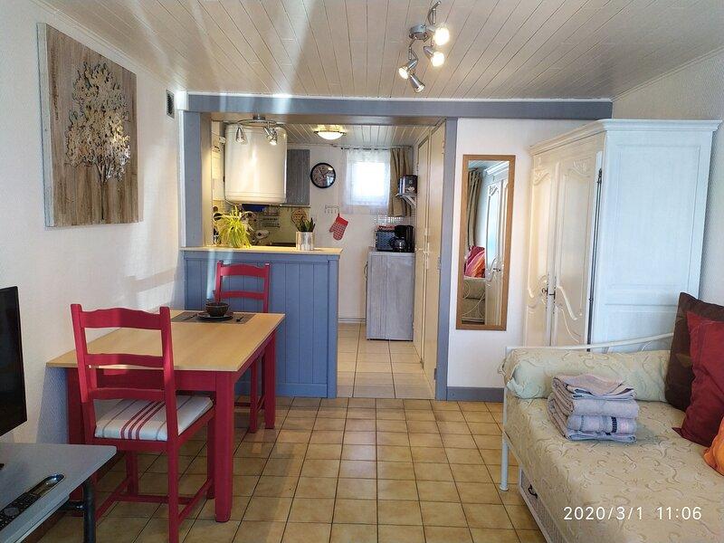 agréable studio pour 2 personnes avec parking et wifi fibre gratuit, holiday rental in Saint-Martin-du-Mont