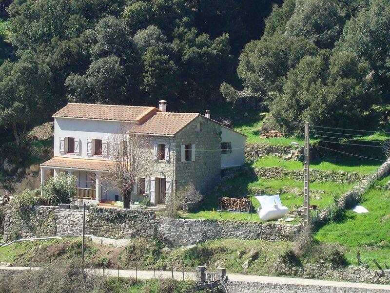 Maison de village entière sur terrain arboré et clôturé, holiday rental in Olivese
