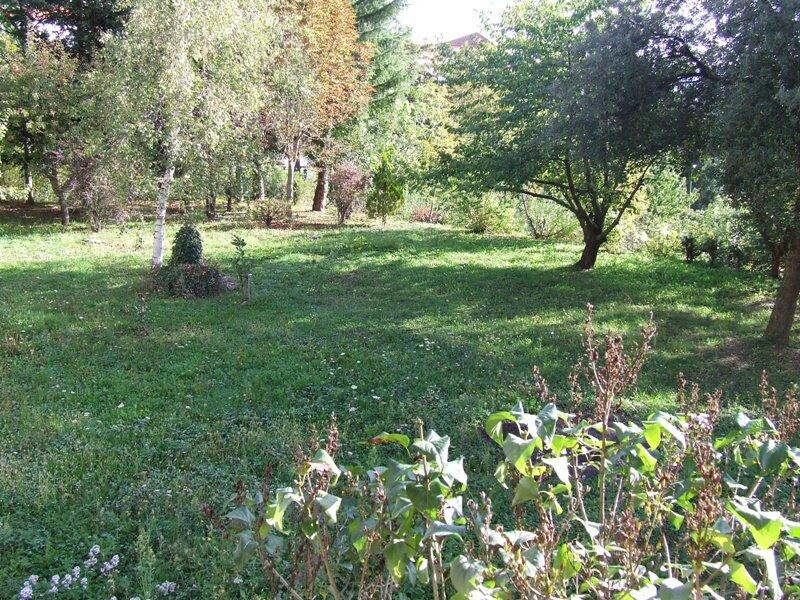 Villa Franca con grande giardino, vacation rental in Agaggio Inferiore