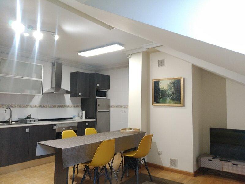 Apartamento céntrico, holiday rental in Seguencu