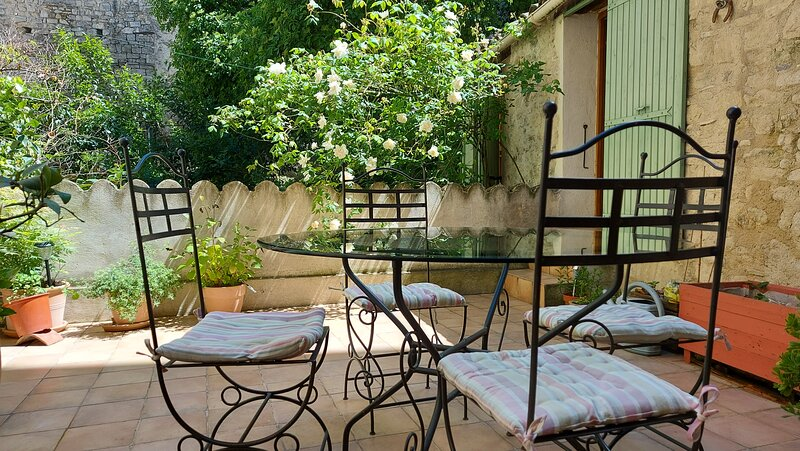 Charming stone house in the heart of the old town of Forcalquier, holiday rental in Mane