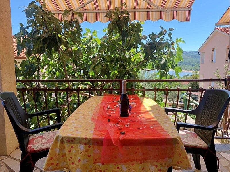 Apartments Šantić, casa vacanza a Cizici