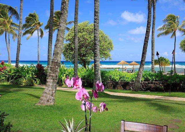 Villa 104: Ocean View Turtle Bay Beachfront Legal Rental, holiday rental in Kawela Bay