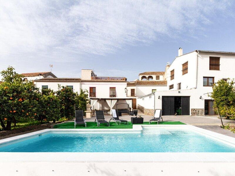 Bright house with terrace and orange garden, holiday rental in Pinos del Valle