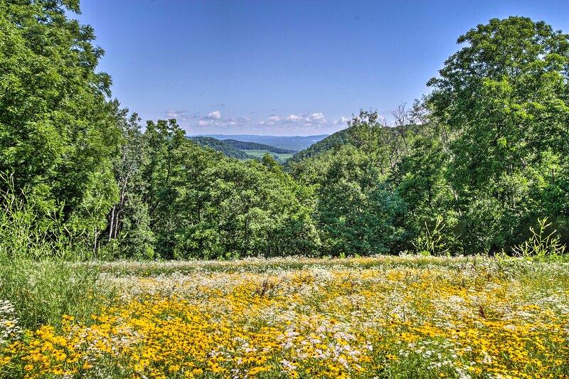 Stunning wild flower and mountain vistas await!