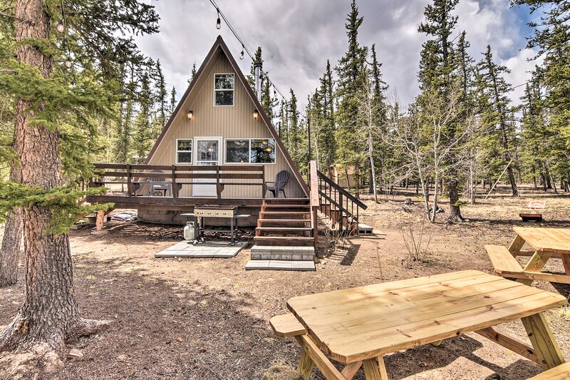 NEW! Sunny 'Muddy Moose' Cabin w/ Fire Pit & Views, vacation rental in Hartsel