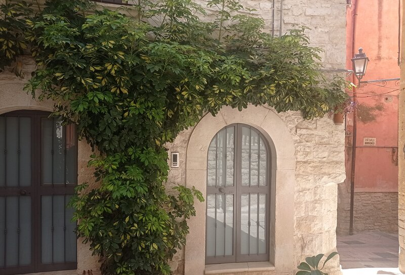 Ierva Chiain Guest House, vacation rental in Cassano delle Murge