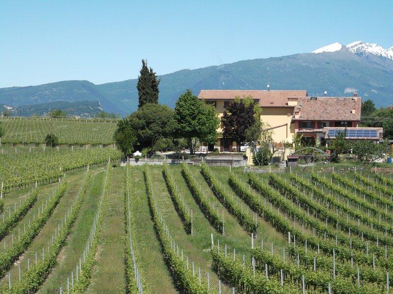 B&B in appartamento, immerso nel verde a 7km dal Lago di Garda e 20km da Verona., vacation rental in Pastrengo