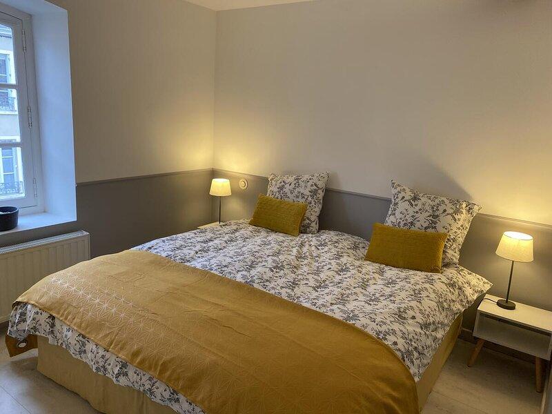 2 chambres, 4 a 6 voyageurs en centre ville, à 5 mins du zoo de la flèche !, holiday rental in Lezigne