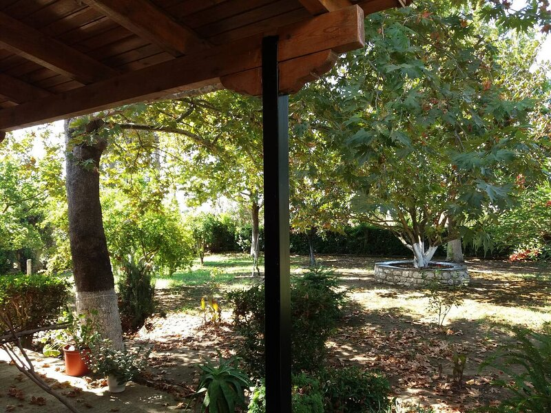Country cottage in Kyllini, Peloponnese, holiday rental in Elis Region