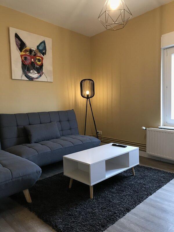 Confort Nancy centre avec salle fitness (45m2), location de vacances à Nancy