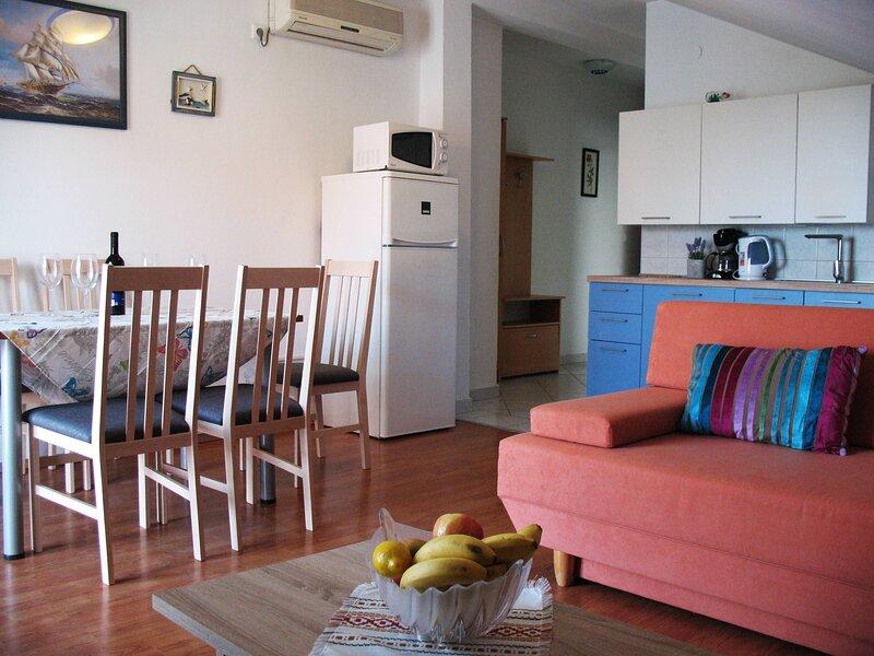 Sea view apartment Niksa Petrcane A1 2+2, holiday rental in Petrcane
