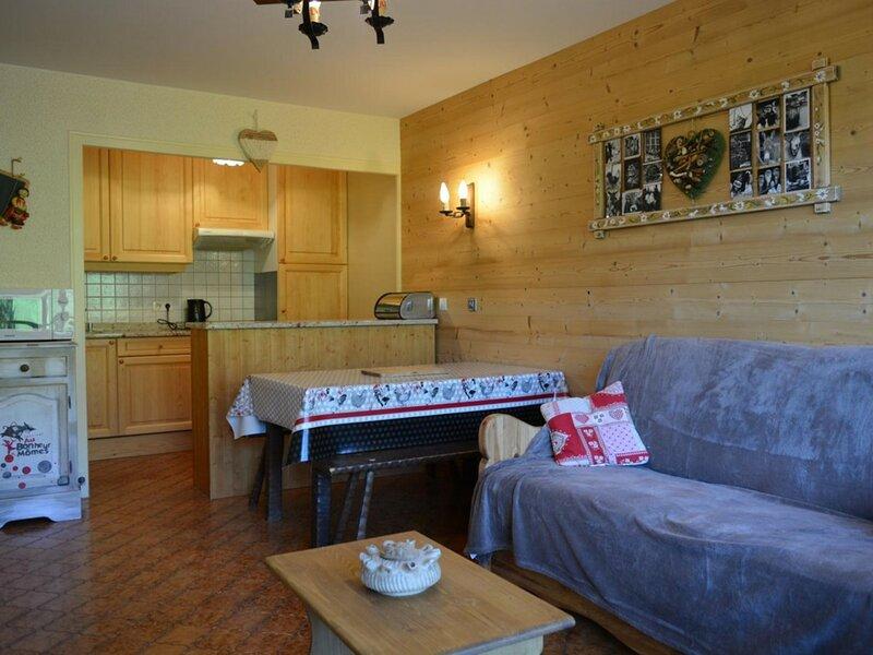 Appt 2 pièces 6 couchages LE GRAND BORNAND, location de vacances à Brizon