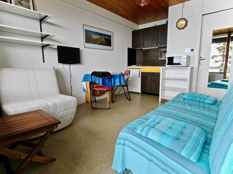 Studio 3 places situé au pied des pistes avec vue sur vallée., alquiler de vacaciones en Chamrousse