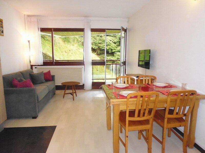 Studio  4 personnes, résidence Paloumère à proximité des pistes, holiday rental in Arrens-Marsous