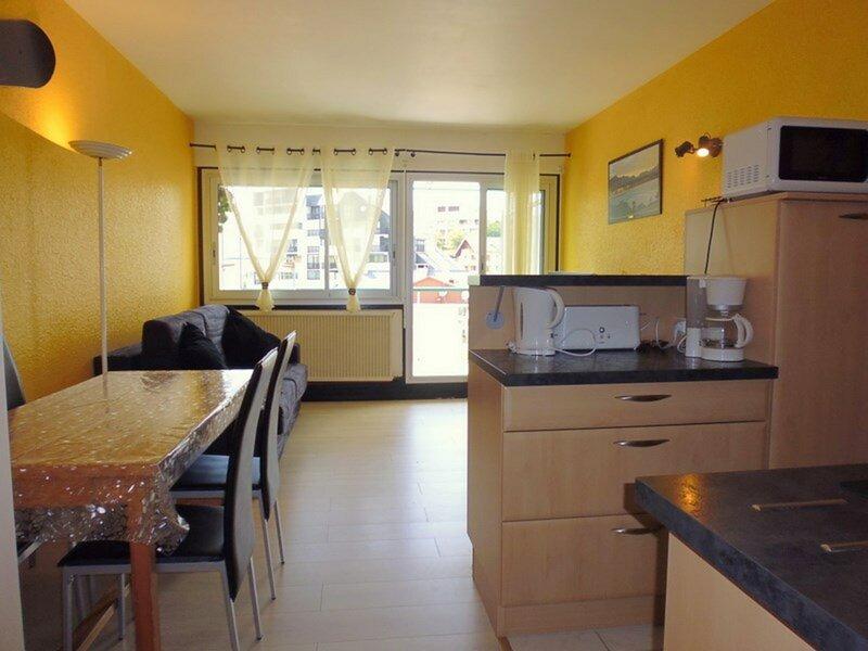 Studio  4  personnes, résidence Sarrière., holiday rental in Arrens-Marsous