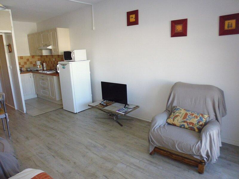 Studio 6 couchages Pene Medaa, holiday rental in Gourette