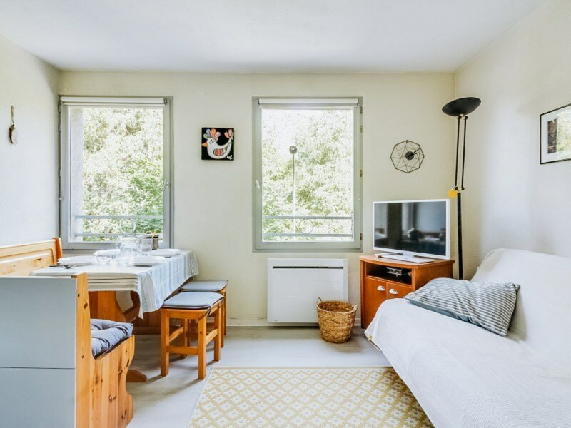 APPARTEMENT  T2 4 PERSONNES RESIDENCE EUGENIE WIFI, holiday rental in Saint-Sauveur