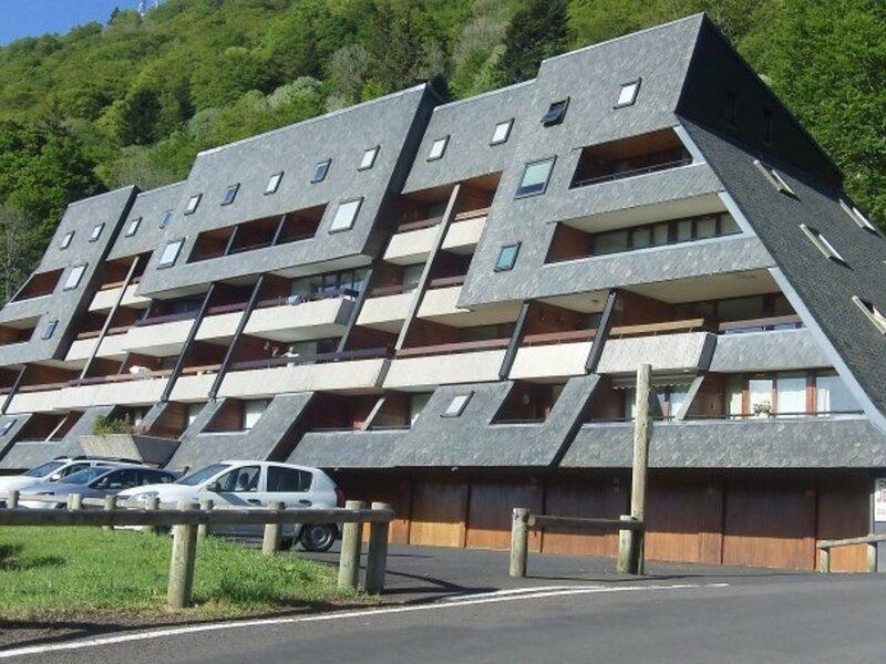 RÉSIDENCE JEAN D'AVEN F2 EN DUPLEX, holiday rental in Chambon-sur-Lac