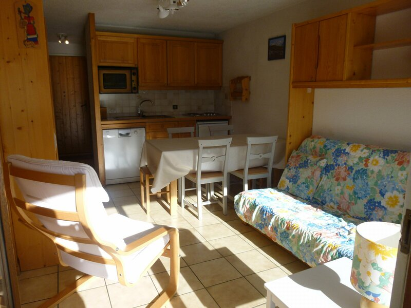 appartement avec sauna privé, holiday rental in Flaine