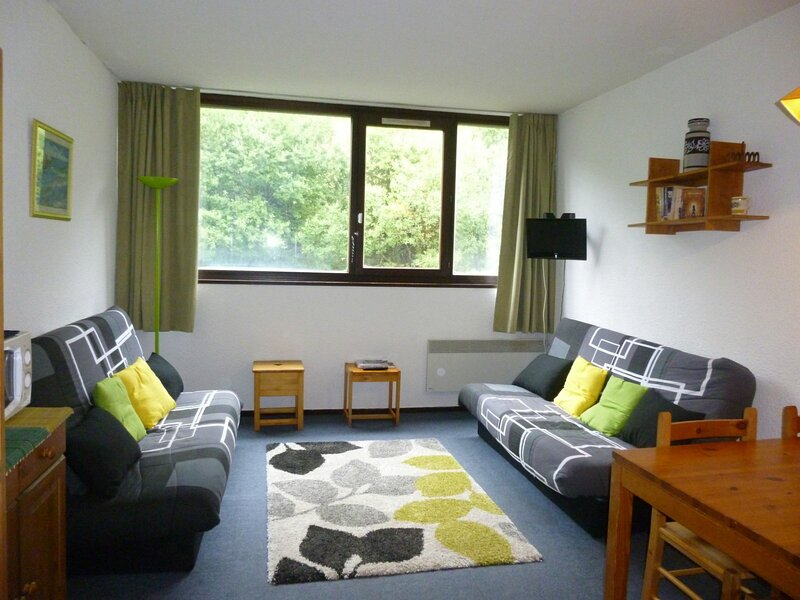 confortable studio proche des pistes, holiday rental in Flaine