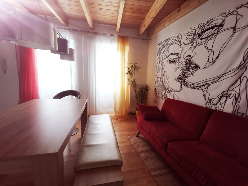 Charming 2-Room Apartment lakenear, FeWo am See, vacation rental in Stockach