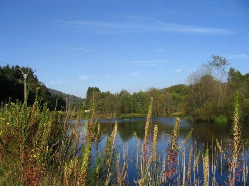 Edelweiss, location de vacances à Tendon