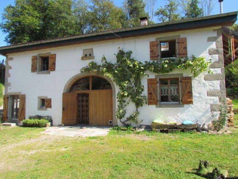 La Boisette, holiday rental in Epinal