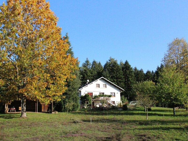 Gîte de la Forte Montagne, holiday rental in La Voivre