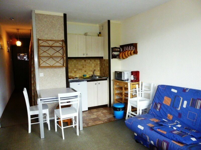 BOT105 ARETTE, holiday rental in Isaba